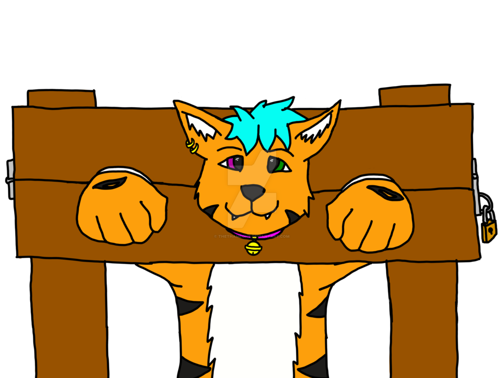 Stuck clip house. Housetiger in pillory by