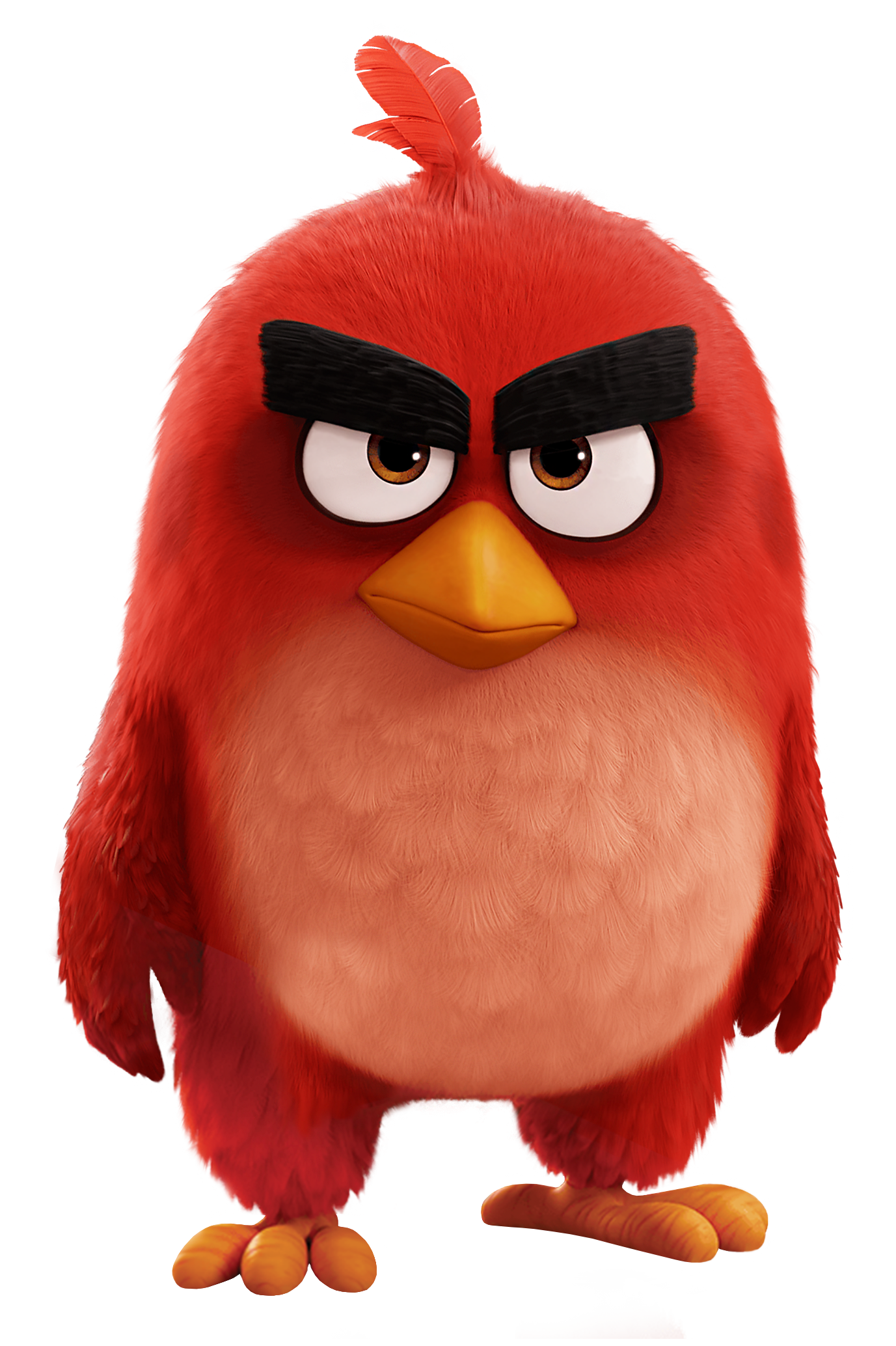 Angry birds movie png. Red bird the transparent