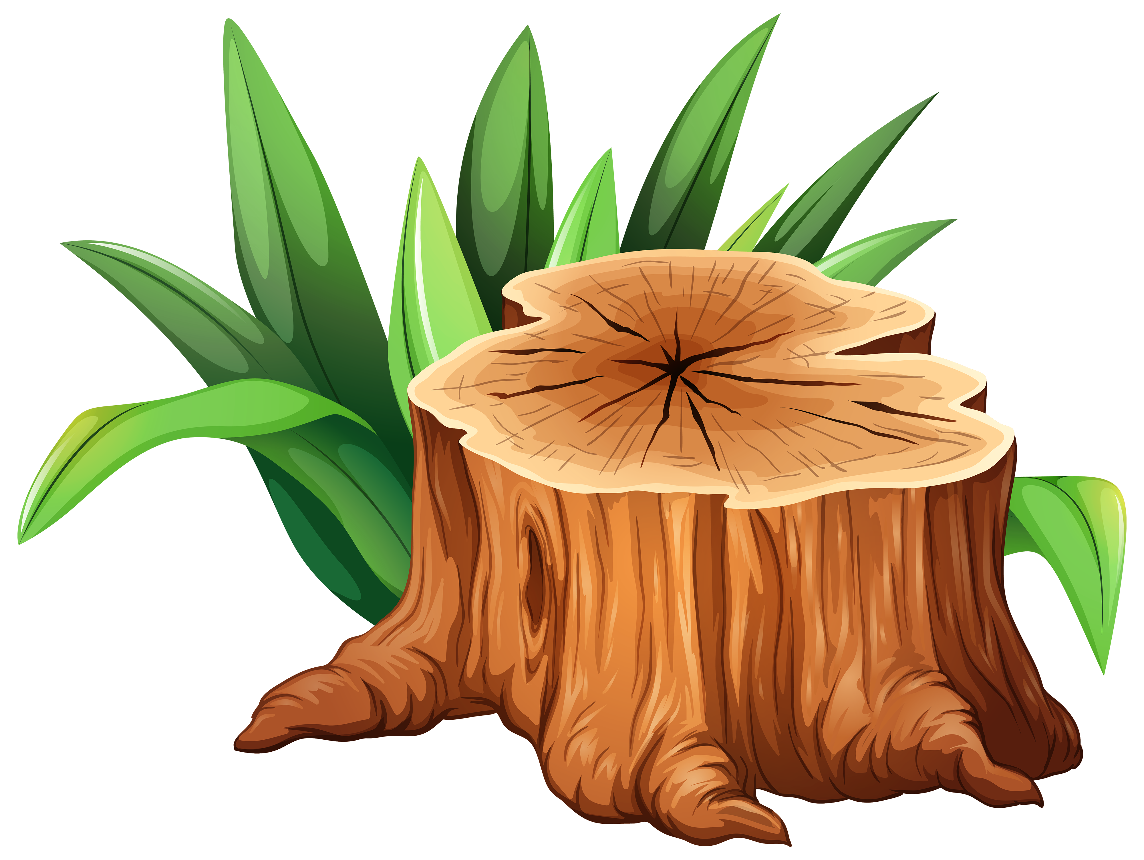 Stump clipart. Tree png image gallery