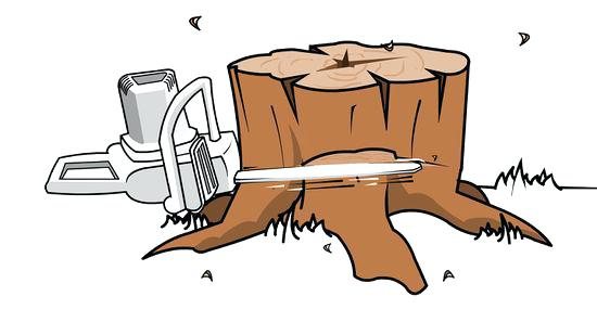 Stump clipart root. Tree and killer roundup