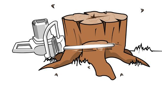 Stump clipart stamp. Tree drawing at getdrawings