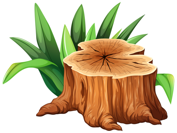 Stump clipart root. Pin by diana nagele
