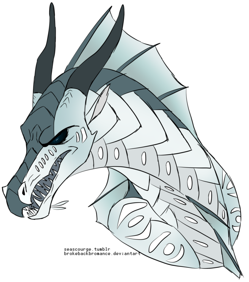 Drawing warrior dragon. Wings of fire tui