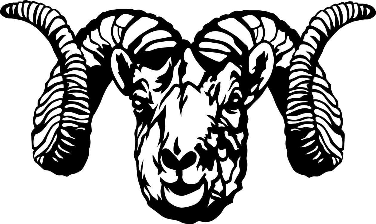 Stylized drawing. Sheep ram download encapsulated