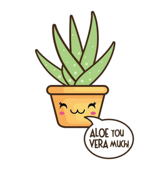 Aloe drawing green plant. Aloevera kawaii cute u