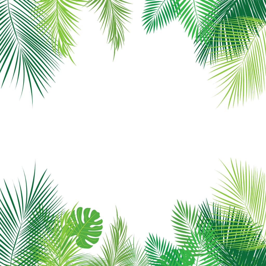 Tropical leaves palmleaves overlay. Summer border png banner royalty free stock