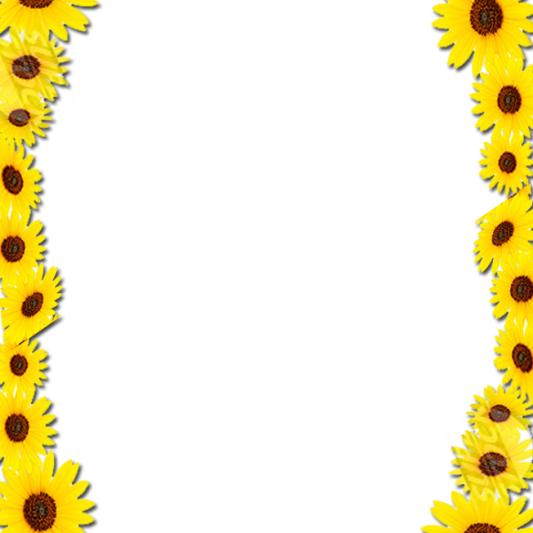 Sunflower border png. Frame free icons and
