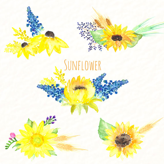Sunflower clipart cluster. Of sunflowers