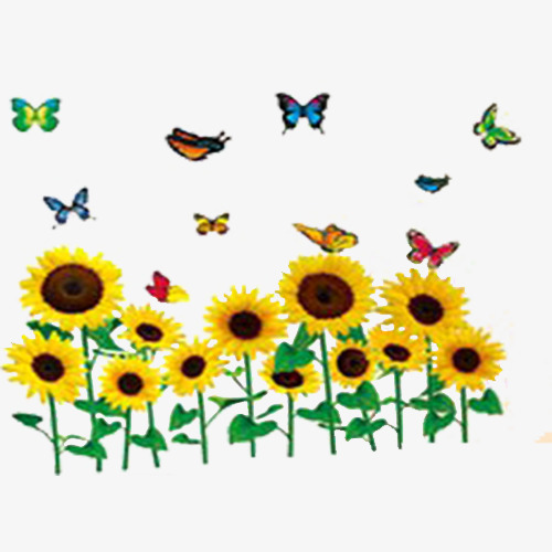 Sunflower clipart diagram. Butterfly yellow flower png