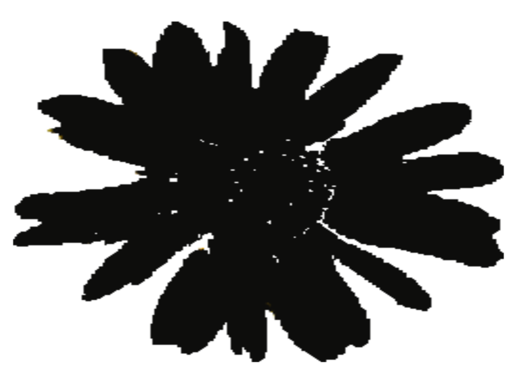 Sunflower clipart silhouette. Computer icons republic of