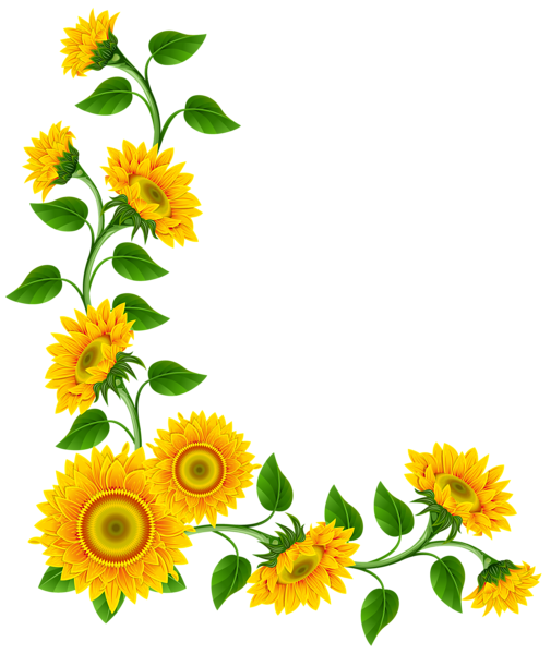 drawing sunflowers hipster