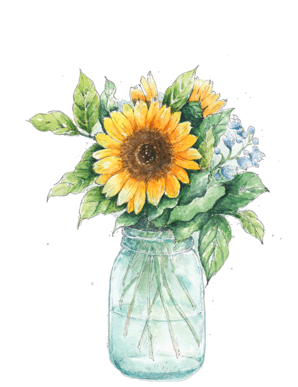 Sunflower clipart watercolor. Ftestickers masonjar sticker