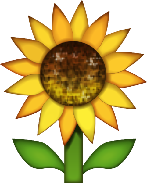 Sunflower emoji png. Download image in island