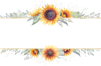 Sunflower png border. Images in collection page