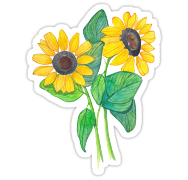 Sunflower sticker png. Tumblr stickers cute drawing