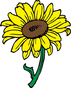 Sunflower clipart single sunflower. Simple black and white