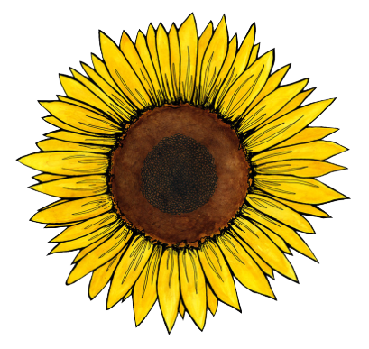 Sunflowers png aesthetic. Clip black and
