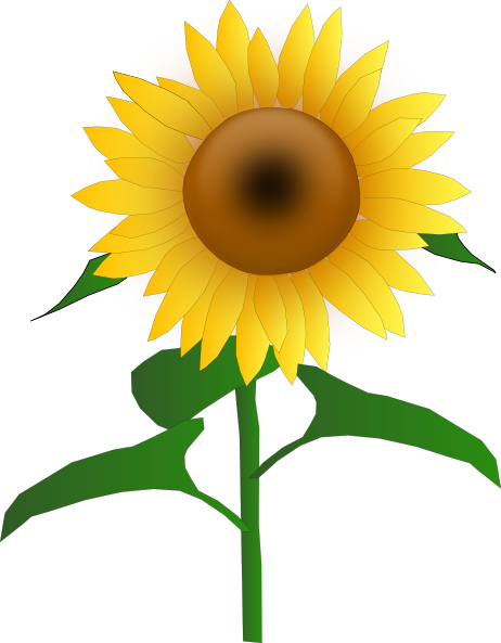 Sunflowers png animated. Sunflower jh clip art