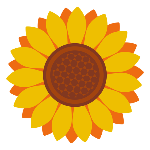 Sunflowers png isolated. Sunflower head icon transparent