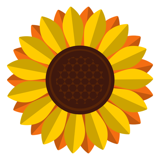 Sunflowers png isolated. Sunflower head clipart transparent