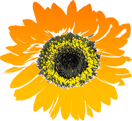 Sunflowers png simple watercolor. Free sunflower clipart and