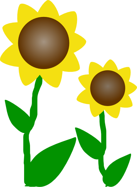 Sunflowers png small. Slunecnice clip art at