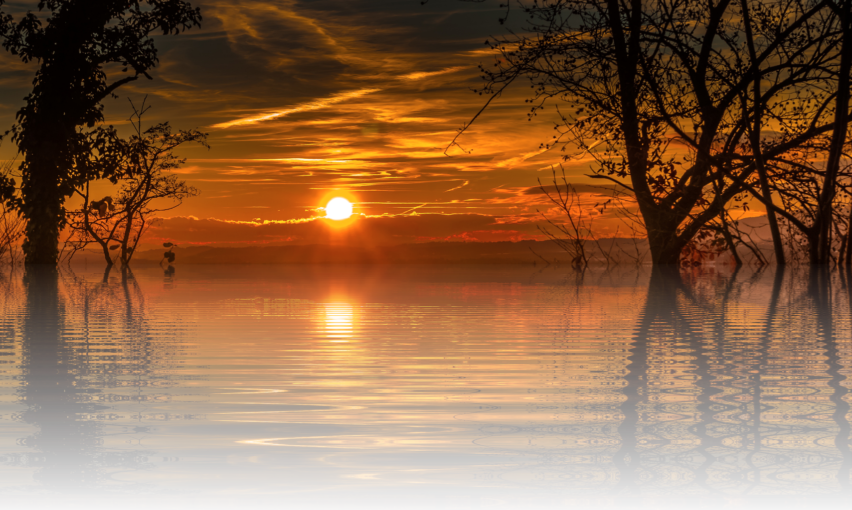 Sunset background png. Sihlouette nature water reflection
