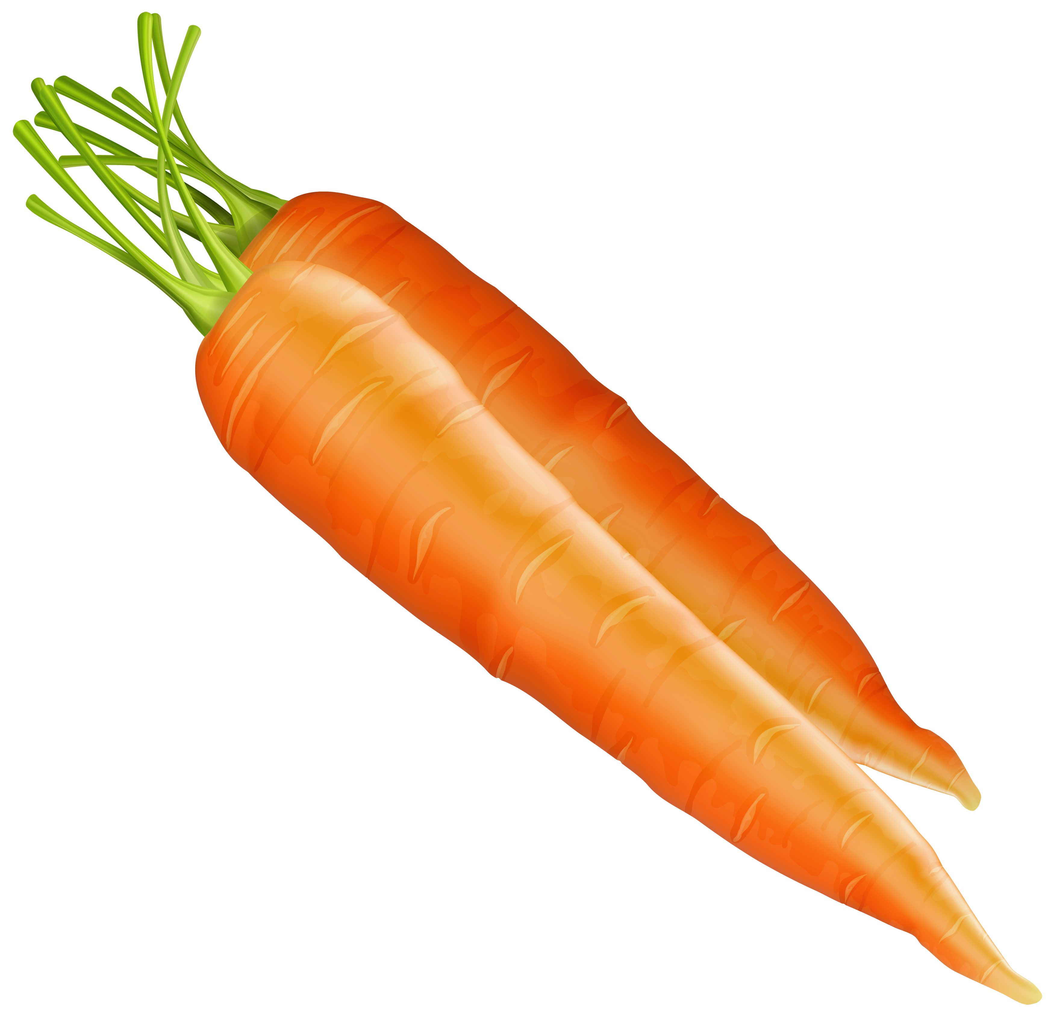 carrots png vegetable
