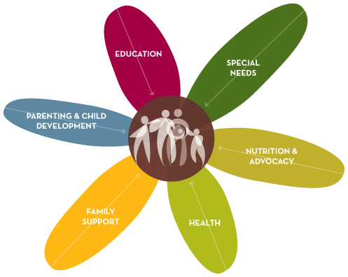 Support drawing health home. Our holistic service model
