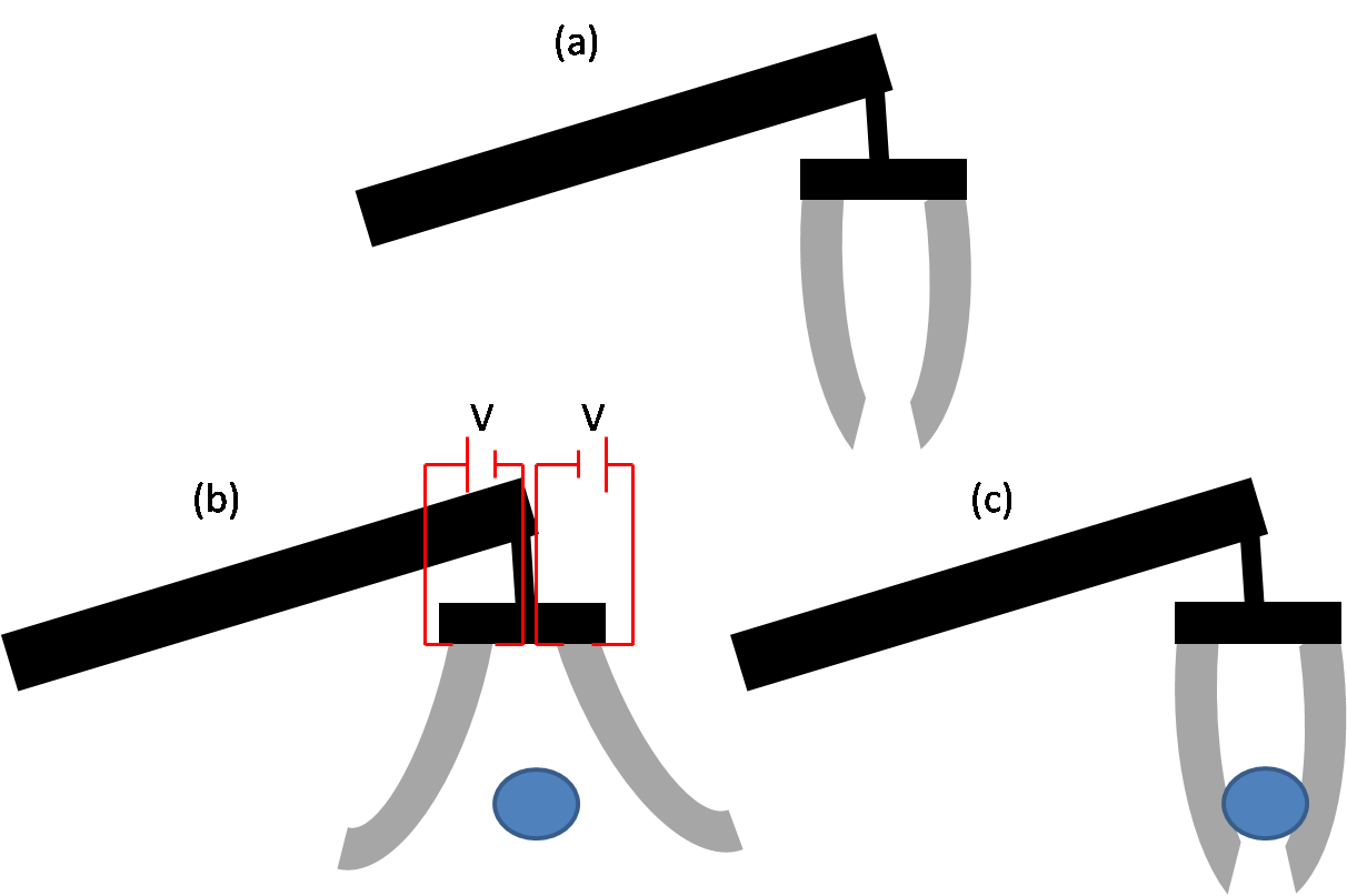 Suspensions clip strain. Electroactive polymers wikipedia