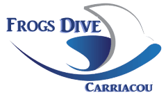Svg airline carriacou. Grenada island information dive