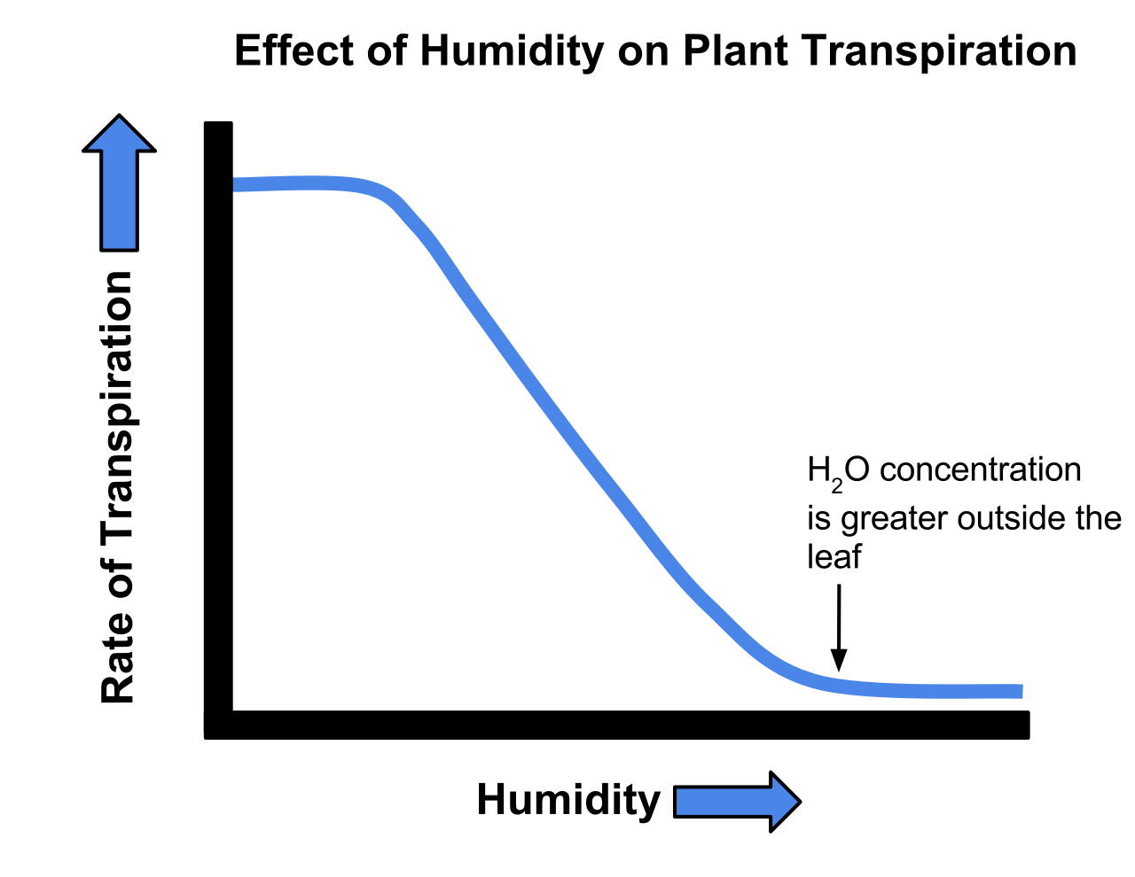 Svg graph growth. Biochemistry effect of transpiration