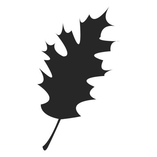 Svg silhouette leaf. Maple transparent png vector
