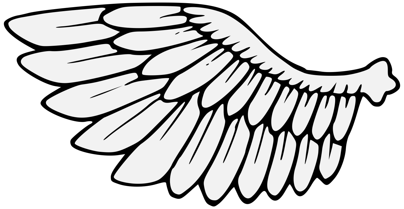 Wing svg traceable. Wings heraldic art details
