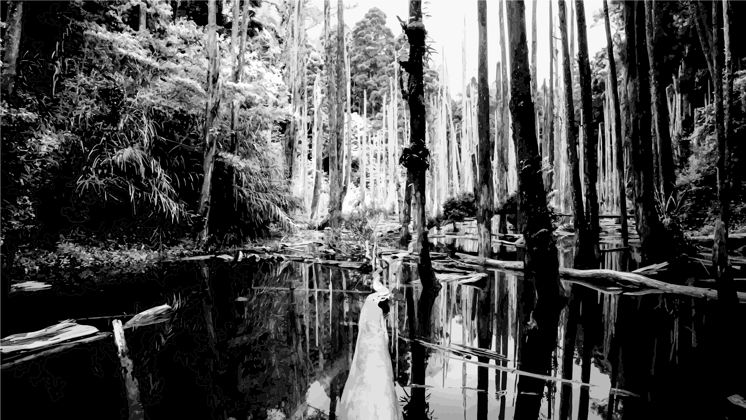 Swamp vector bayou. Collection of free bayous