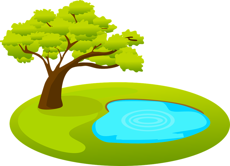 Vector nature clip art. Collection of pond