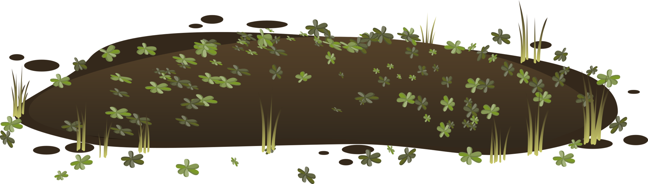 Swamp vector forest. Peat computer icons freshwater