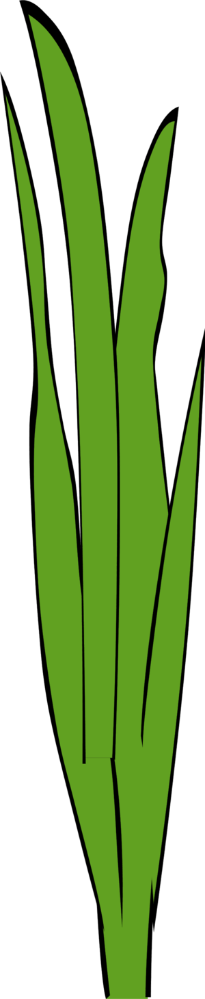 Swamp vector grass. Marsh cliparts free download