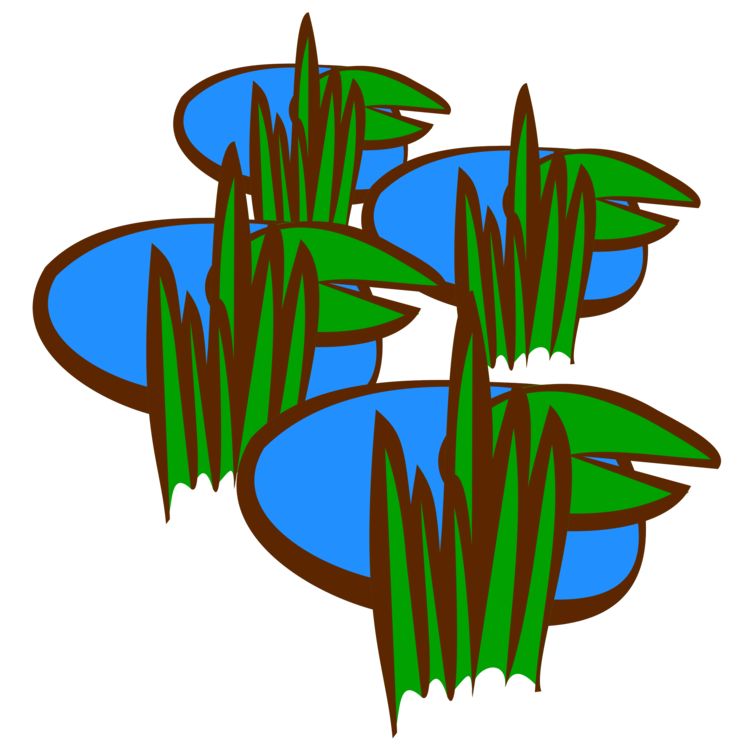Swamp vector wetland. Drain the computer icons