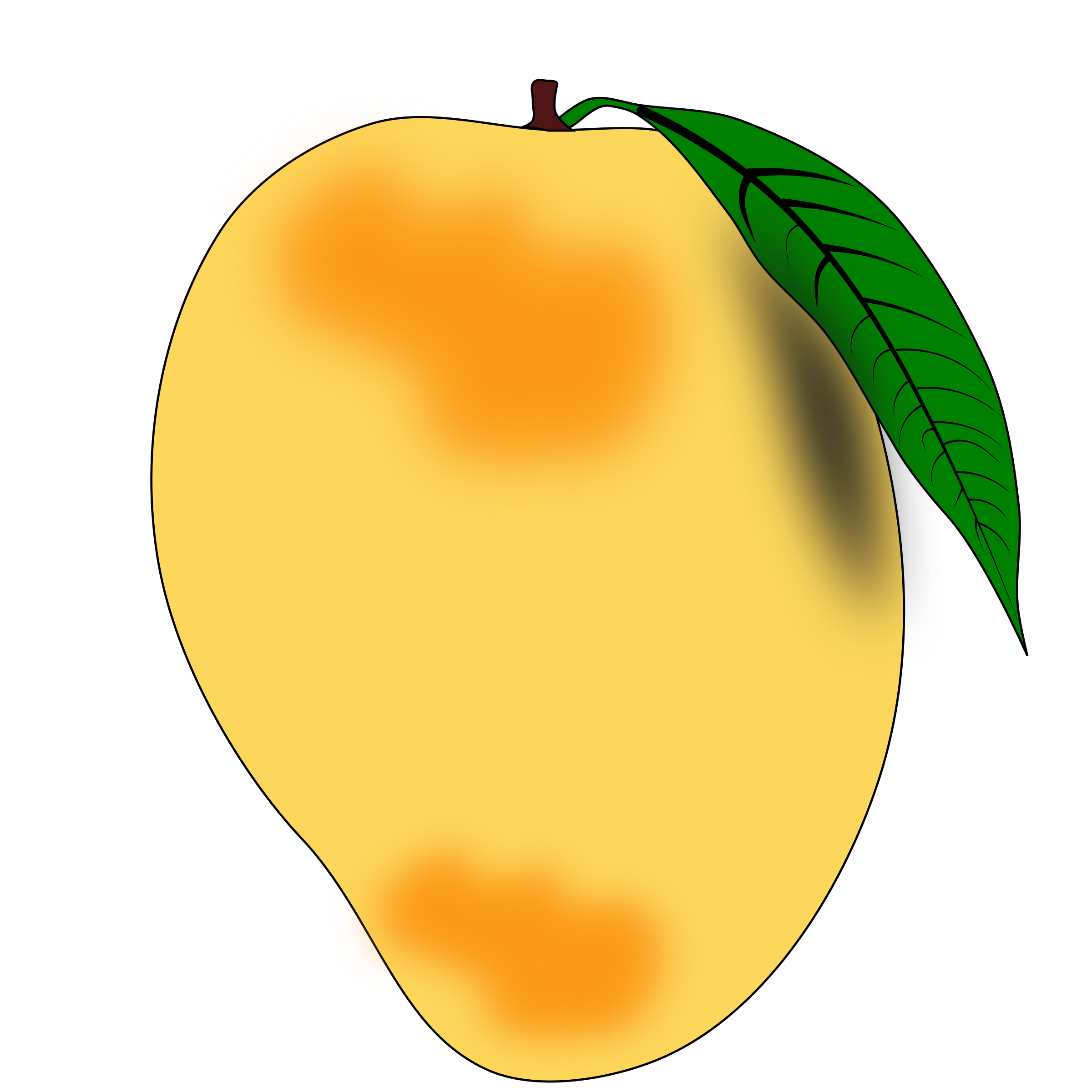 Ripe mango. White mangoes free download