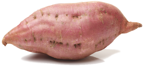 Sweet potato png. Cifingredients well thats