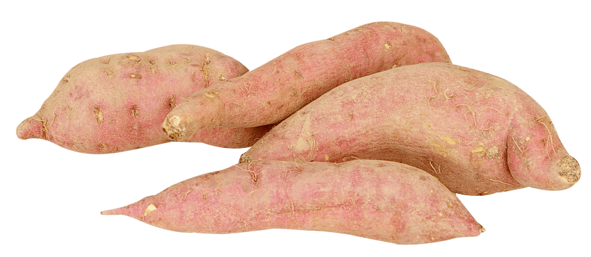 Sweet potato png. Free images toppng transparent