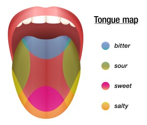 Sweets clipart food taste. How do we our