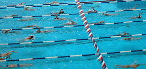 Swimming clipart swimming race. The sport in a