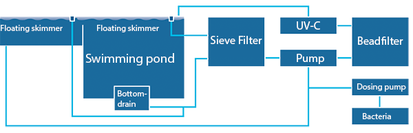 Swimming transparent clear bottom. Pond type