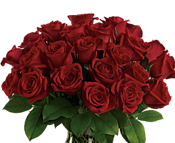 Sympathy clipart red rose. Or roses for