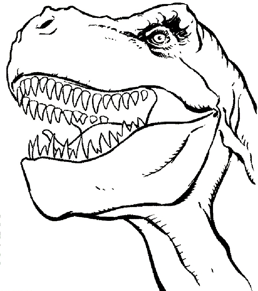 T rex clipart dinosaur drawing. Outline at getdrawings com