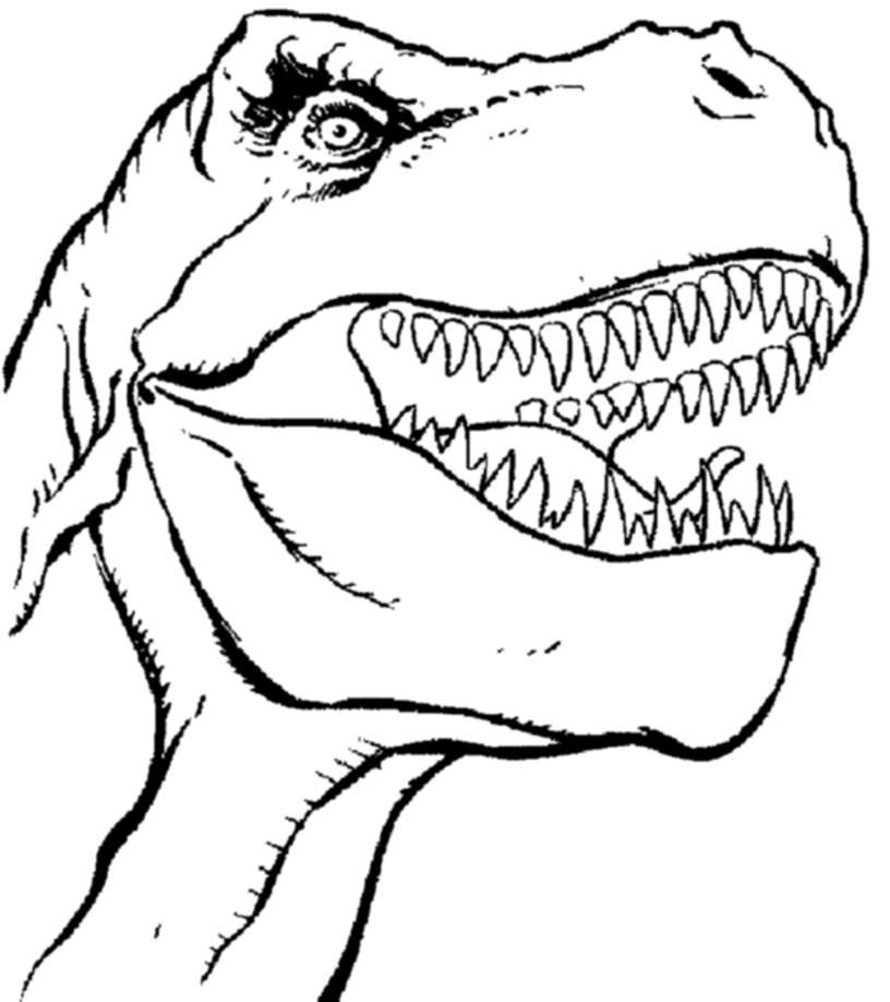 T rex clipart face. Drawing at getdrawings com