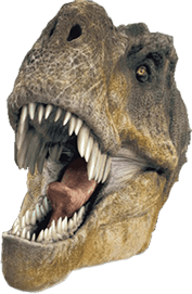 Trex png transparent background. T rex head stickpng