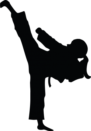 Taekwondo clipart ninja kick. Silhouette karate at getdrawings